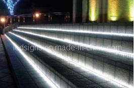 SMD LED Rope Flat 4 Wires (LS-RF4WW)