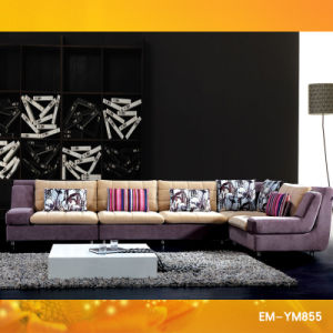 2011 Fashion Fabric Sofa Set Designs (YM-855) pictures & photos