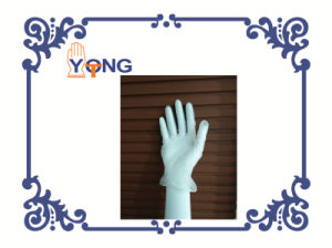 Vinyl Glove and Nitrile Gloves