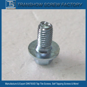 Blue White Zinc Plated Triangular Thread Self Tapping Screw pictures & photos