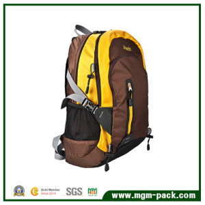 Fashion Backpack Bag for Travel, Sports, Computer, Student pictures & photos