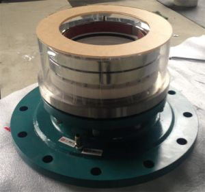 Mechanical Seal pictures & photos