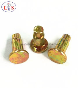 Flat Head Rivet / Rivet / Fastener with High Quality pictures & photos