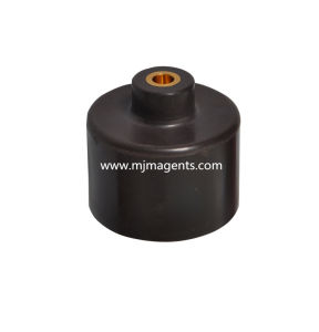 Plastic PPS Injection Bonded NdFeB Magnetic Products