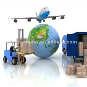 Qualified Freight Forwarder for Colon Free Zone pictures & photos