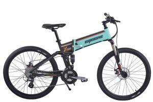 250W to 500W Power Sandbeach Bike 48V Lithium Battery Bicycle