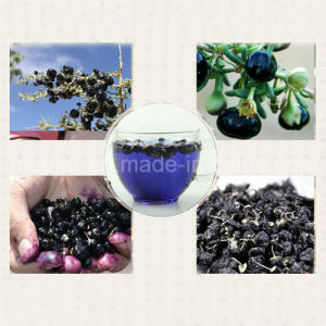 Medlar Nature Ningxia Black Wolfberry pictures & photos