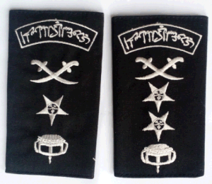 Armt Uniform Badges pictures & photos