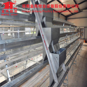 Jinfeng Good Quality Uganda Poultry Farm Automatic Chicken Layer Cage pictures & photos