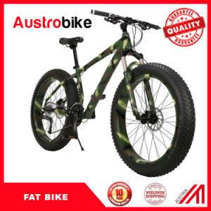New Style Fat Bike pictures & photos