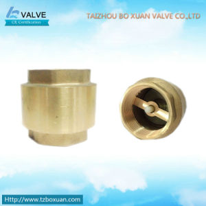 Brass Check Valve with Nylon Core (BX-3003)