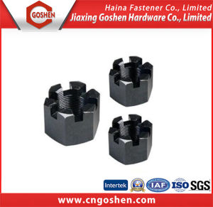 Carbon Steel Hex Slotted Nut DIN935 M4-M100 pictures & photos