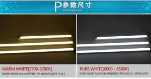 2016 Hot New Stylish T5 LED Tube Lights with Ce RoHS pictures & photos