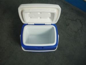 High Quality Cooler Box Beer Can Cooler Car Cooler Box/Fresh Box/Fishing Box pictures & photos