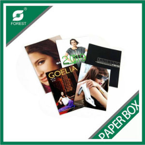 Glossy Paper Magazine Book for Wholesale Fp4654151 pictures & photos