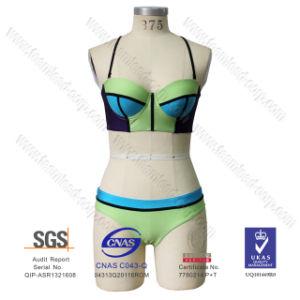 2016 Newest Lycra Spandex Bikini Swimwear pictures & photos