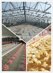 Low Cost Prefabricated Light Steel Structure Poultry House for Broilders pictures & photos