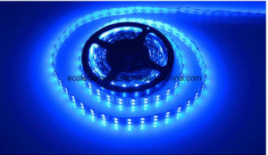 22W Ce and Rhos 120SMD5050 Blue LED Strip pictures & photos