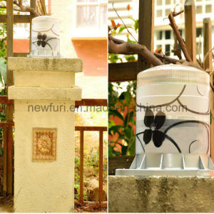 Solar Garden Light/Wall Lamp High Quality LED Chips pictures & photos