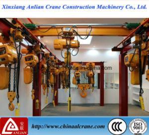 Heavy Duty electric Chain Hoist for Sale pictures & photos
