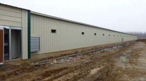 Prefabricated Steel Structure Chicken House pictures & photos