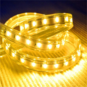 ETL Approved High CRI Bet 5630 LED Strip Light pictures & photos