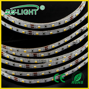 30LED/M RGB SMD3528 LED Flexible Strip IP20/65/68 with CE/RoHS