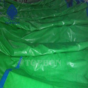PE Tarpaulin with UV Treated for Boat Cover Tb120 pictures & photos