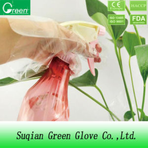 Disposable Clear PE Protective Gloves pictures & photos