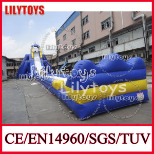 Best Selling Super Adult Inflatable Hippo Slide, Water Slide for Sale (V-HP-047) pictures & photos