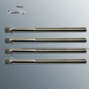 M3-M40 Non Standard Customized Special Fastener, Special Screw (FB026)