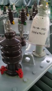 D11 Single Phase Oil-Immersed Distribution Power Transformer pictures & photos