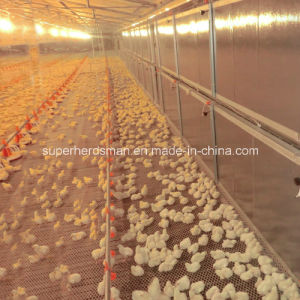 Automatic Full Set Poultry Control Shed Equipment for Broiler pictures & photos