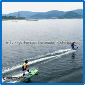 90cc Motorized Surfboard for Sale pictures & photos