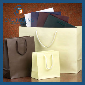 Customzed High Quality Paper Gift Bag pictures & photos
