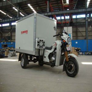 3 Wheel Electric Bicycle with Cooling Van pictures & photos