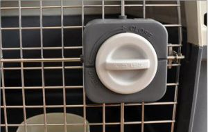 Plastic Pet Carrier Airline Approved pictures & photos