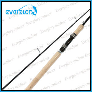 Chameleon Painting 2PCS Fishing Rod pictures & photos