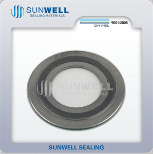 Non Rounded Spiral Wound Gaskets Sunwell 630 pictures & photos