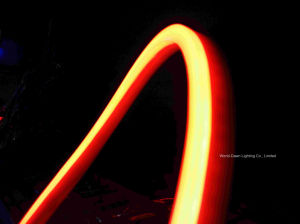 High Brightness Decorated LED Neon Flex (WDLSN-220-F5-80LEDs-E) pictures & photos