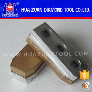 Perfect Polishing Diamond Grinding Block Used on Werkmaster Machine pictures & photos