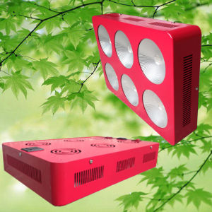 Indoor High Power COB LED Grow Light Full Spectrum Plant LED for Plants Growth pictures & photos