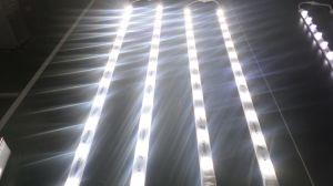 24V 36W Bridgelux LED Light Bar for Lighting Box pictures & photos