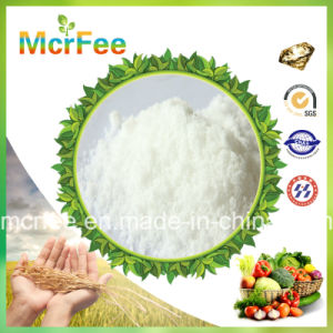 High Quality Fertilizer Potassium Nitrate for Agriculture