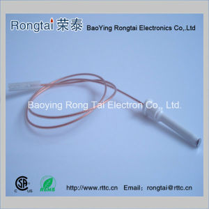 Ignition Electrode for Gas Oven / Gas Cooker pictures & photos