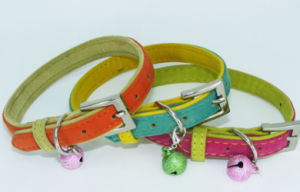 New Style Flocking Pet Leashes Collar pictures & photos