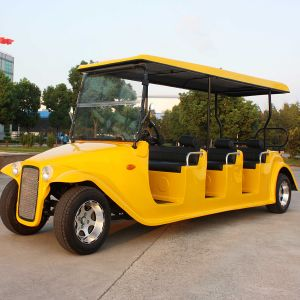 CE Approve 8 Seats Classic Electric Car for Sale (DN-8D) pictures & photos
