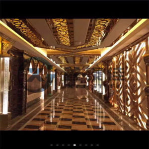 Modern Design of Hotel/Clubhouse/KTV/Luxury Establishment/Coffee Shop Partition Screen, Customized Design pictures & photos