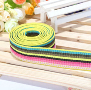 High Quality Different Color PP Webbing pictures & photos