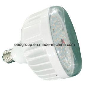 120 Degree E26 E27 PAR38 LED Bulb 42W 2700k 4500lm LED PAR Light with FCC Clear PC Cover IP65 Dimmable pictures & photos